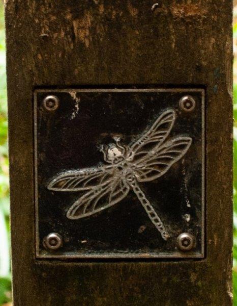 Dragonfly brass rubbing