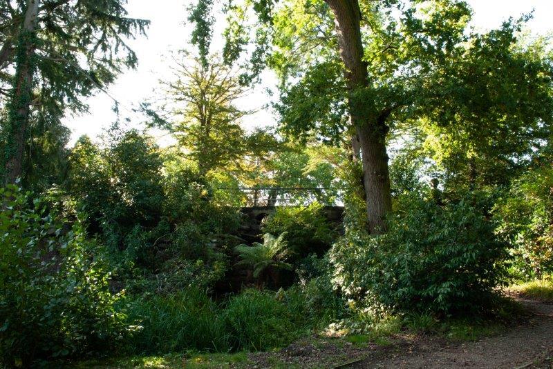 Dunorlan water garden