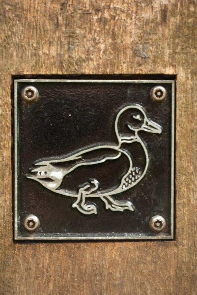 Duck brass rubbing