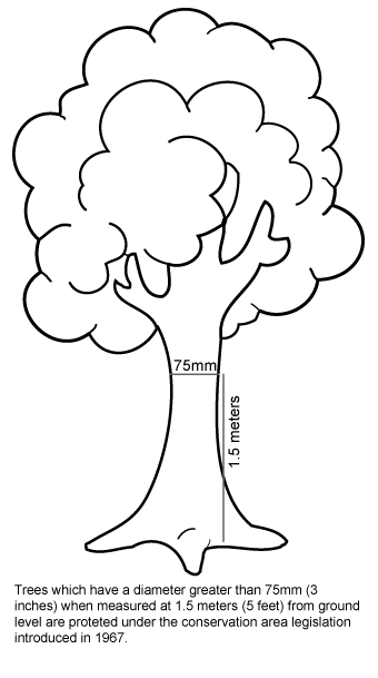 Trees which have a diameter greater than 75mm (3 inches) when measured at 1.5 meters (5 feet) from ground level are proteted under the conservation area legislation introduced in 1967.