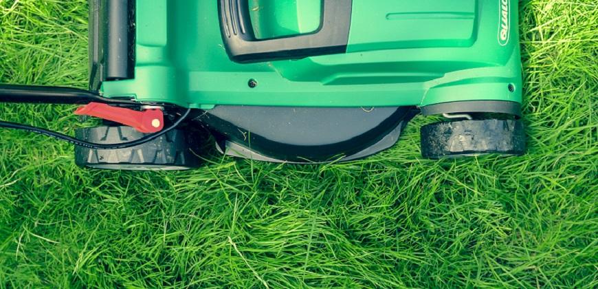Grass being cut