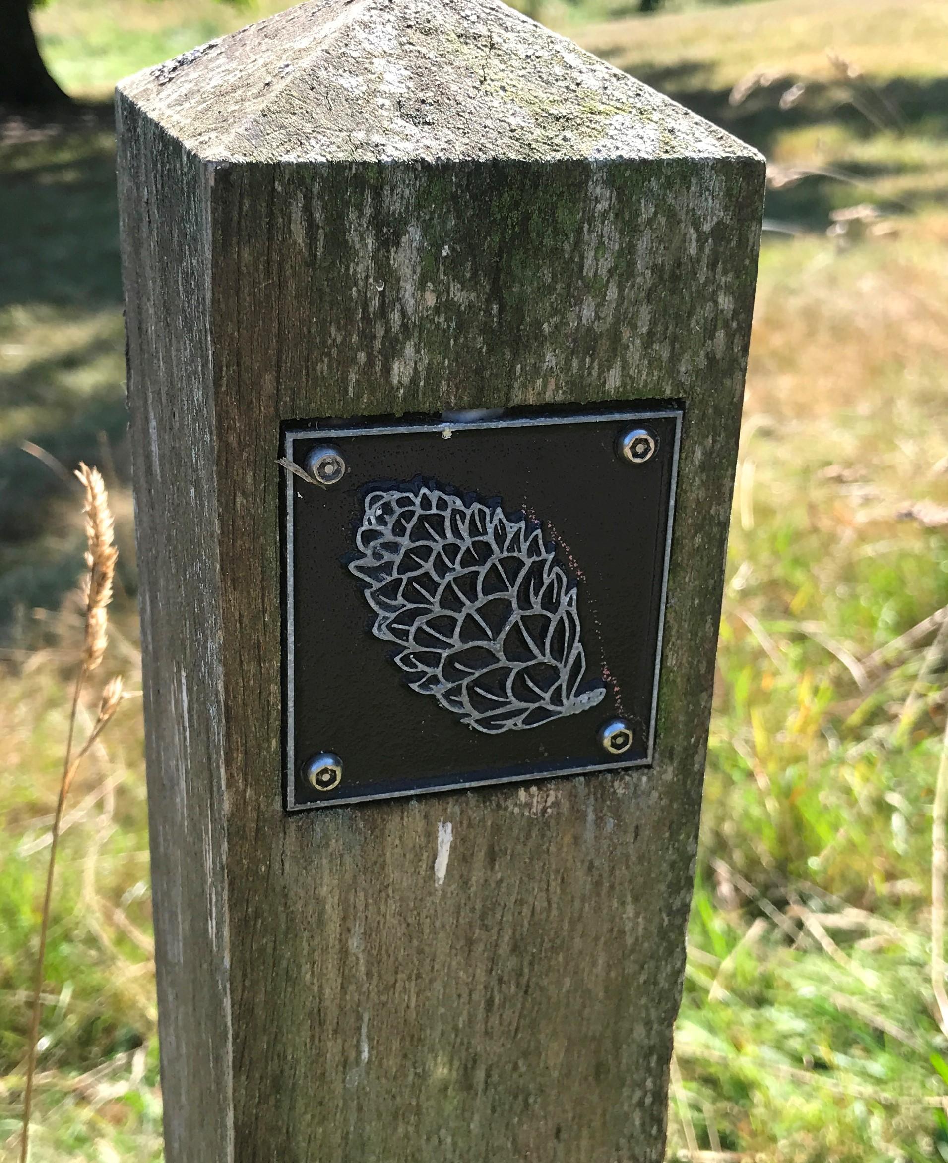 Brass fir cone